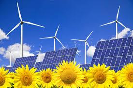 Foto de girasoles, con paneles solares detrás y aerogeneradores al fondo